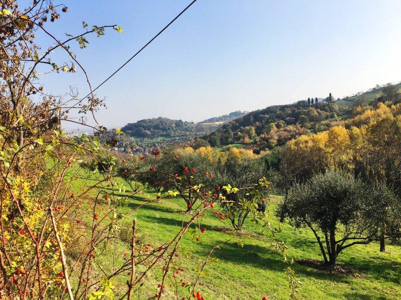 panorama-parco-villa-ghigi-bologna