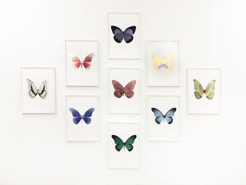 Farfalle quadri Arte fiera bologna 2017