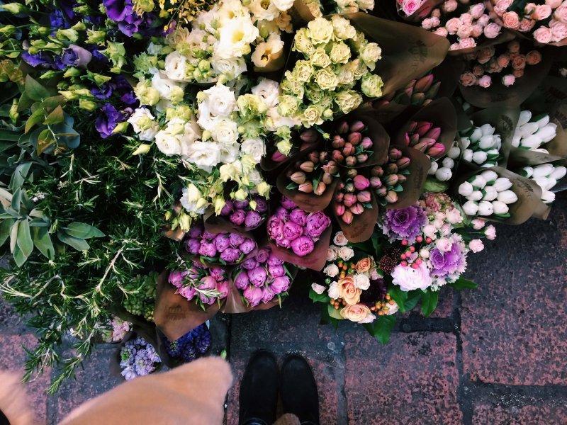 Flowers Frida's Bologna
