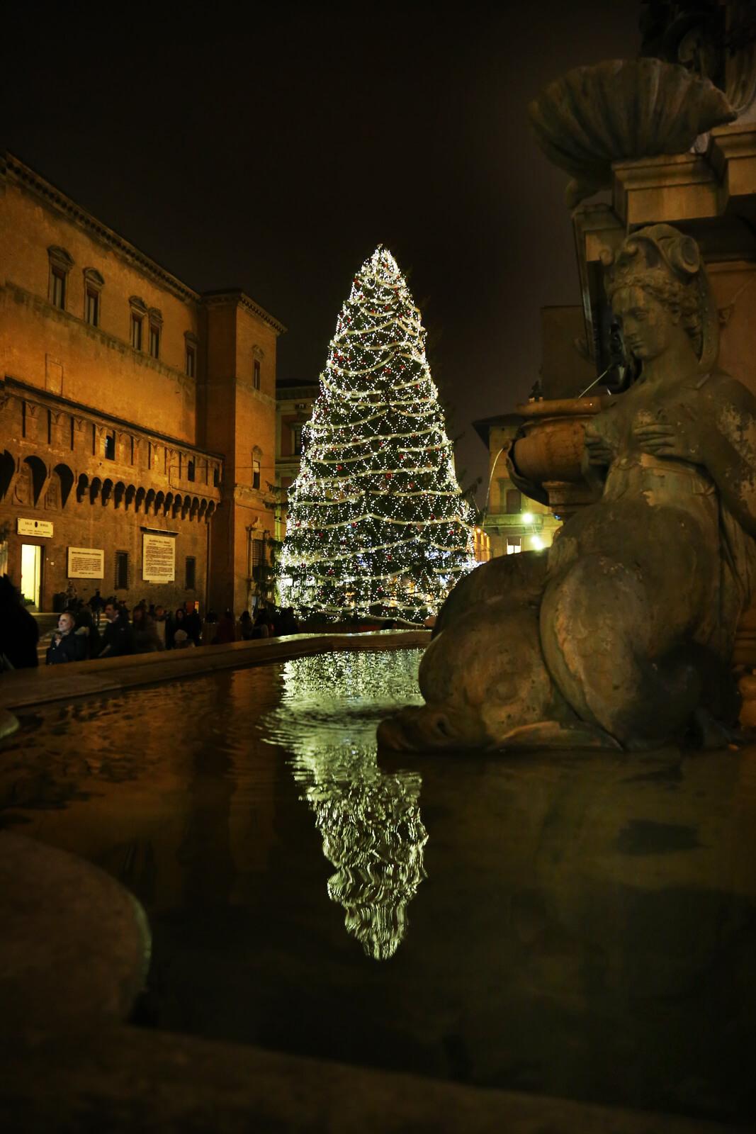 Albero Natale Bologna 2015
