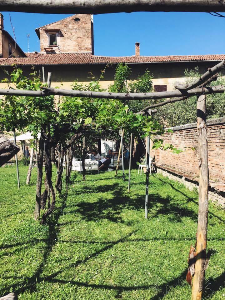 Orti di Orfeo Bologna_ viti